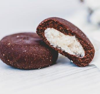 BIO Dattel Fruchtkonfekt Kokos Kokos