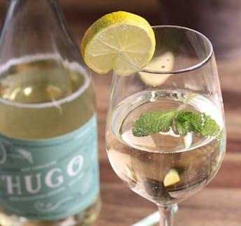 BIO Der ehrliche Hugo